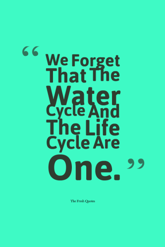 SAVE_WATER_CYCLE_SLOGANS